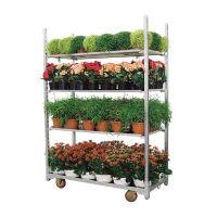 Roll container para plantas - 1350x565x1900 mm - Segunda mão