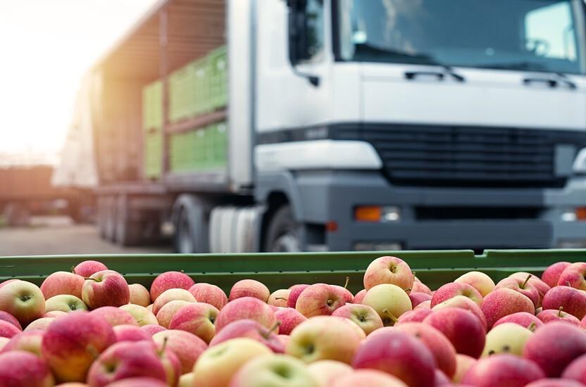 Mantenha as suas frutas e legumes frescos com a embalagem logística adequada