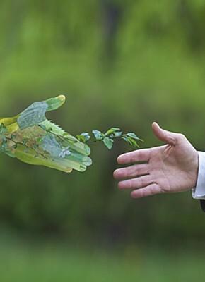 5 passos para construir uma cadeia de abastecimento sustentável